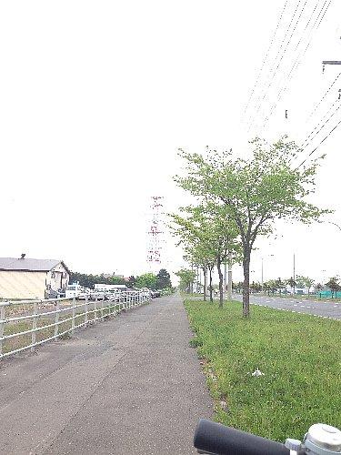写真02.jpg