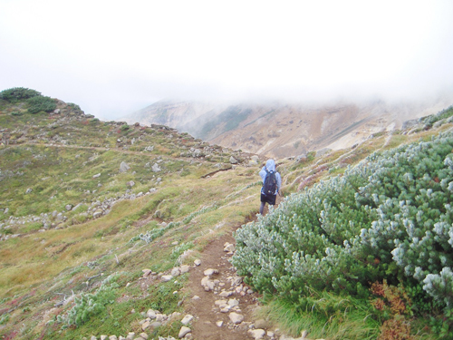 山写真1.jpg