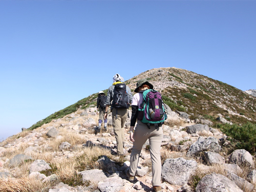 山写真4.jpg