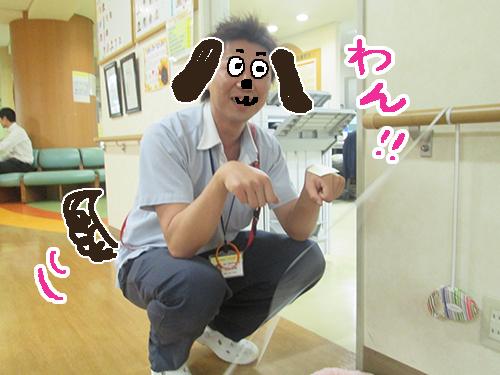 犬ダミー2.jpg