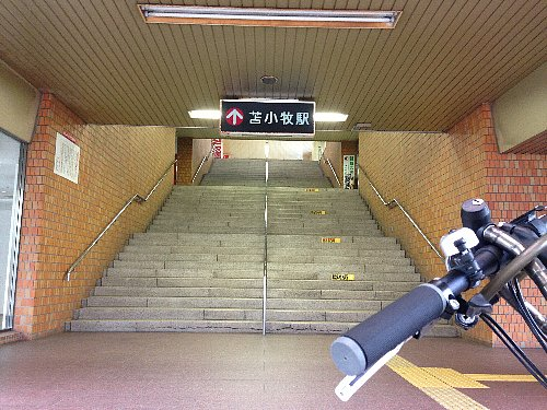 photo_06.jpg
